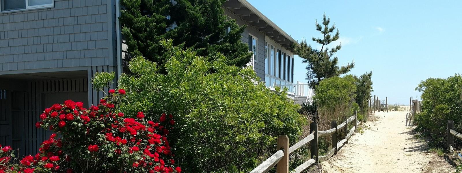 Bethany Beach Waterfront Property